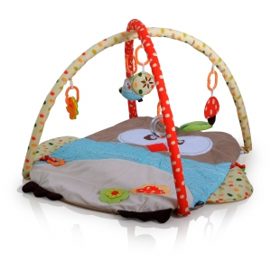 16075 Owl Activity Mat