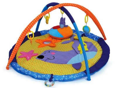 16048 Seal Activity Mat